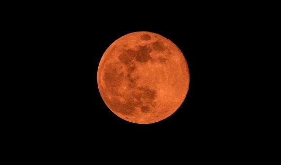 moon789754.jpg