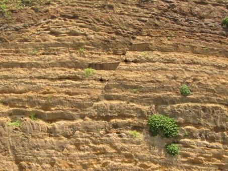 【地震予知】神奈川の異臭騒ぎは「スーパー南海地震」の前触れだった…活断層の岩が割れると異臭がする模様