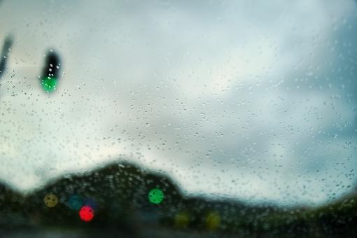rain7286882.jpg