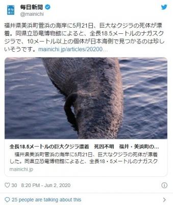 screenshot-03_40_14-1591123214526-526.jpg