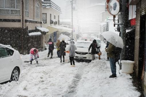 snow865321.jpg