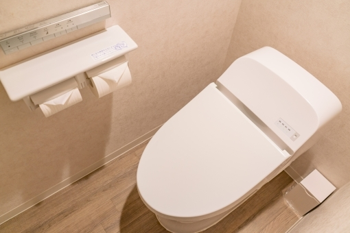 toilet5445.jpg