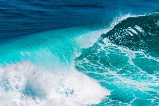 tsunami586845.jpg