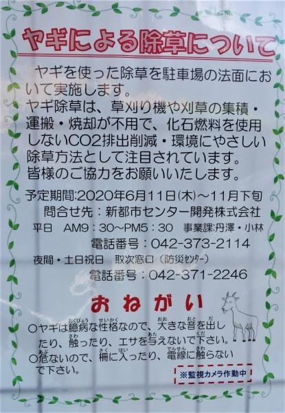 DSC05960.jpg
