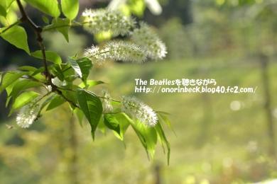 IMG_2021_04_07_7640.jpg