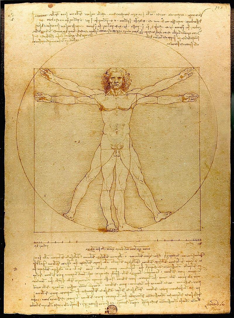 『ウィトルウィウス的人体図』 レオナルド・ダ・ヴィンチ