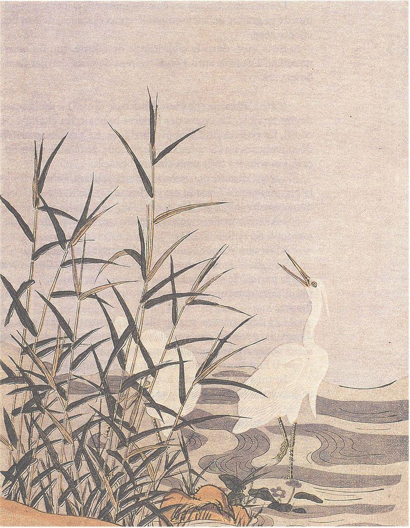 『鷺と葦』 鈴木春信