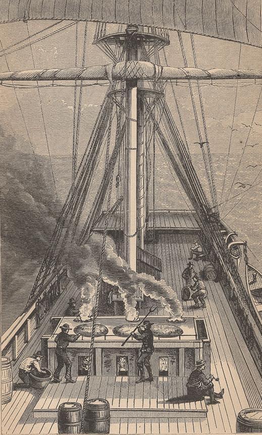 船の甲板で脂を煮る捕鯨船