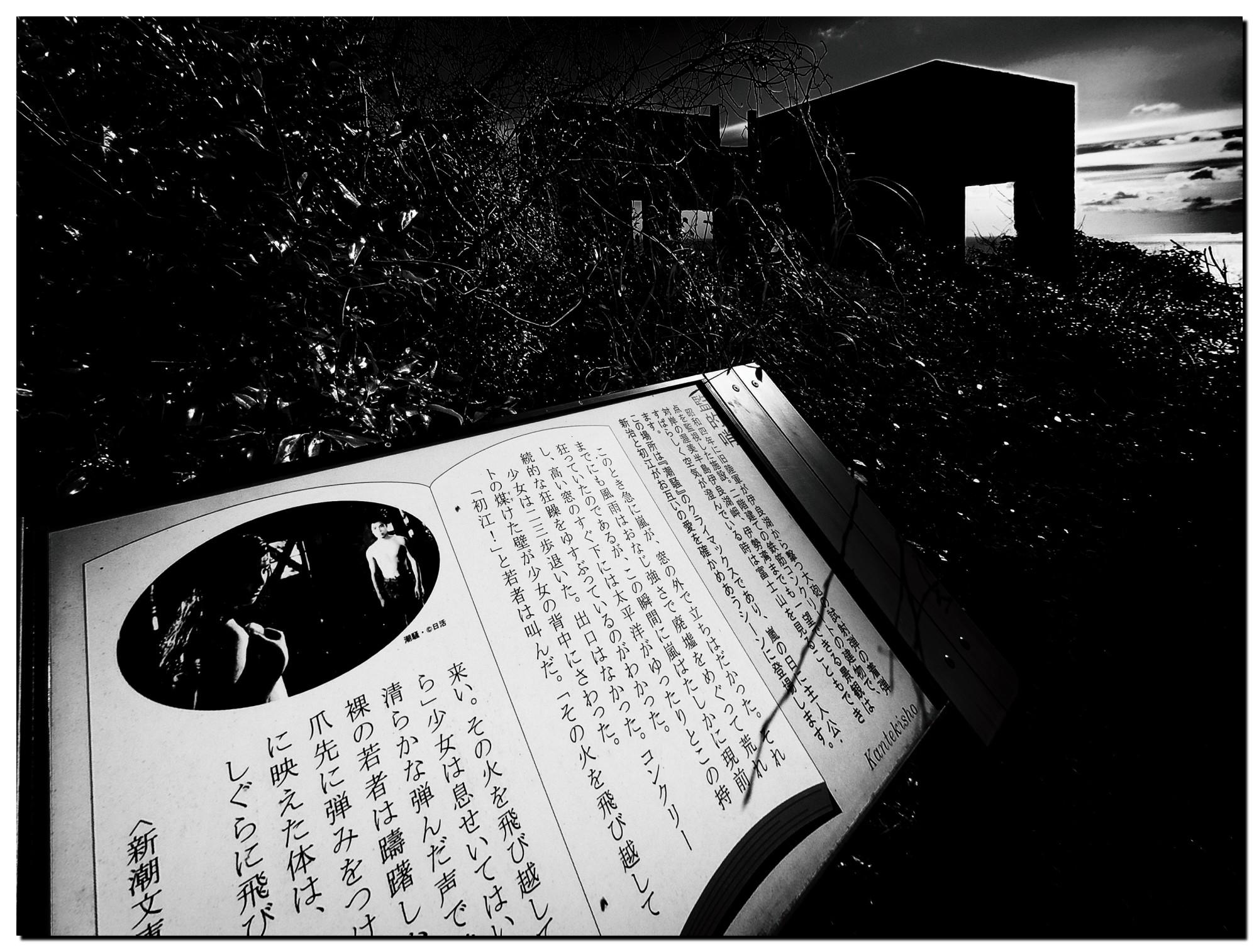 01LR-P1268331-Edit-3.jpg