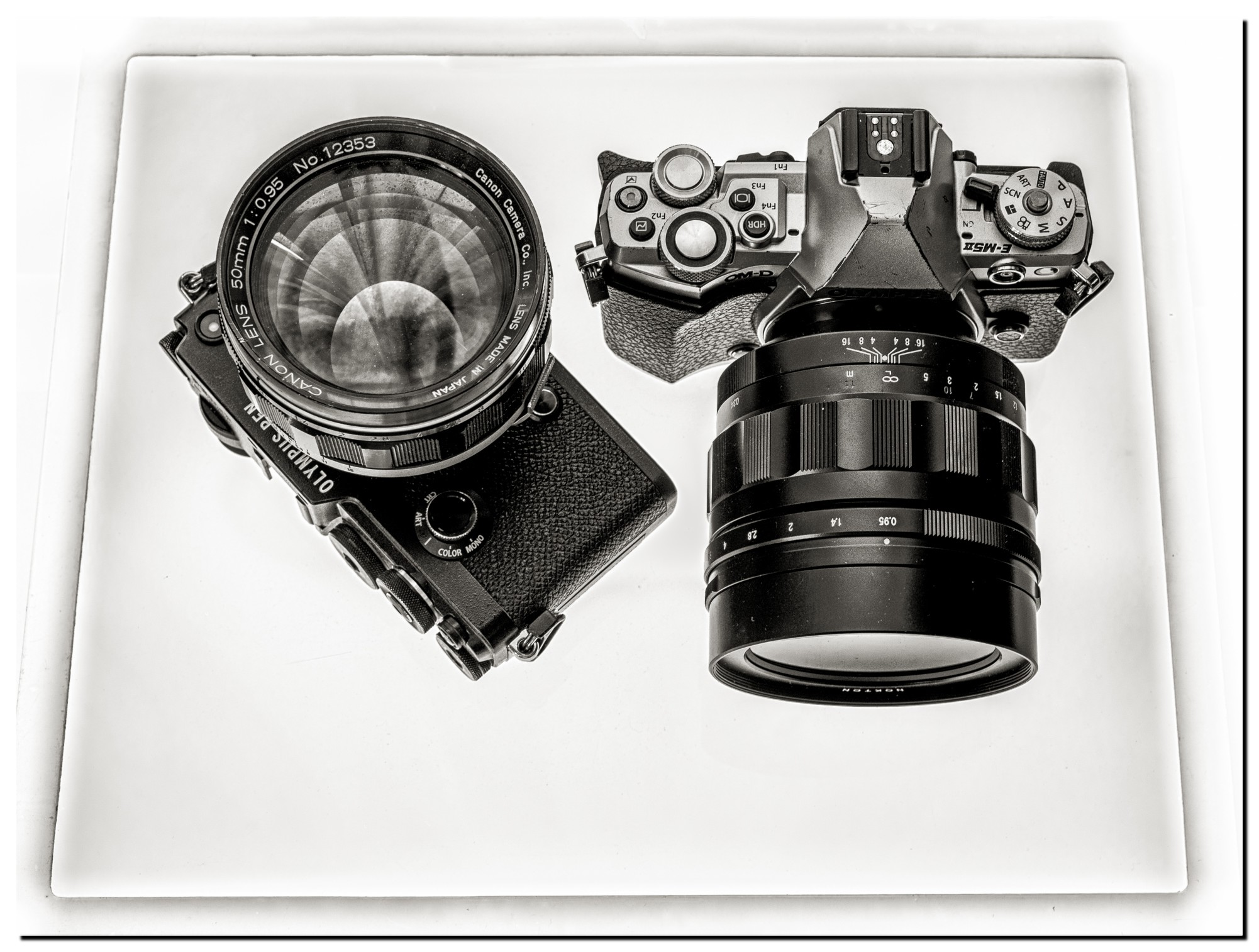 LR-M5083916-Edit-2-2.jpg
