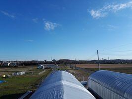【写真】育苗ハウスの上から見る北方向の農園風景