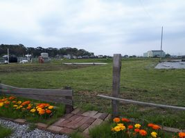 【写真】受付ハウス正面の花壇からみた農園風景