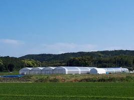 【写真】北西方面から見るポレポレ農園全体像
