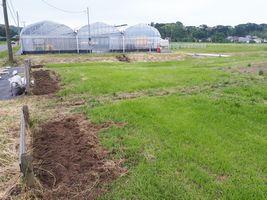 【写真】ひまわりを植えるために耕された農園前の花壇