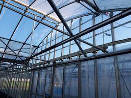 【写真】ブルハウス(4連棟)天井の少し短くなったビニール