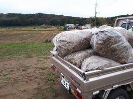 【写真】のぶ子さんの畑からいただいた豆ガラを軽トラの荷台に積んだところ
