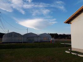 """【写真】農園上空に浮かんだ""""UFO雲"""""""