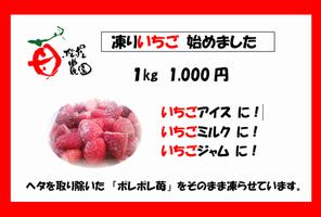 【写真】凍りイチゴの販売用ポップ