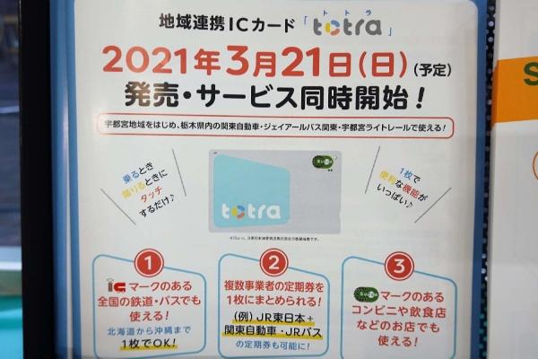 totora(トトラ)