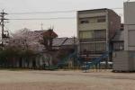 2021黒田小学校 (11)