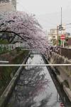 2021春黒田小学校