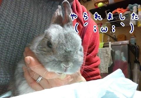 chibita20210114.jpg