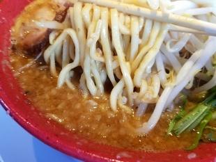 だるまや新津 味噌ラーメン 麺スープ