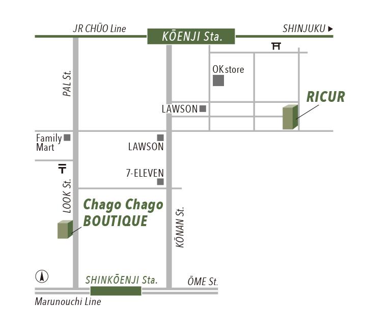 chago_Ricur_map_card_color.jpg