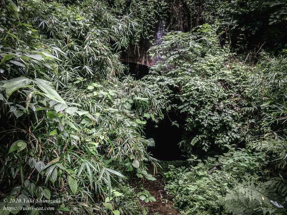 畑トンネル(心霊スポット) 南側トンネル出入り口付近は草で覆われていてトンネルがよく見えない