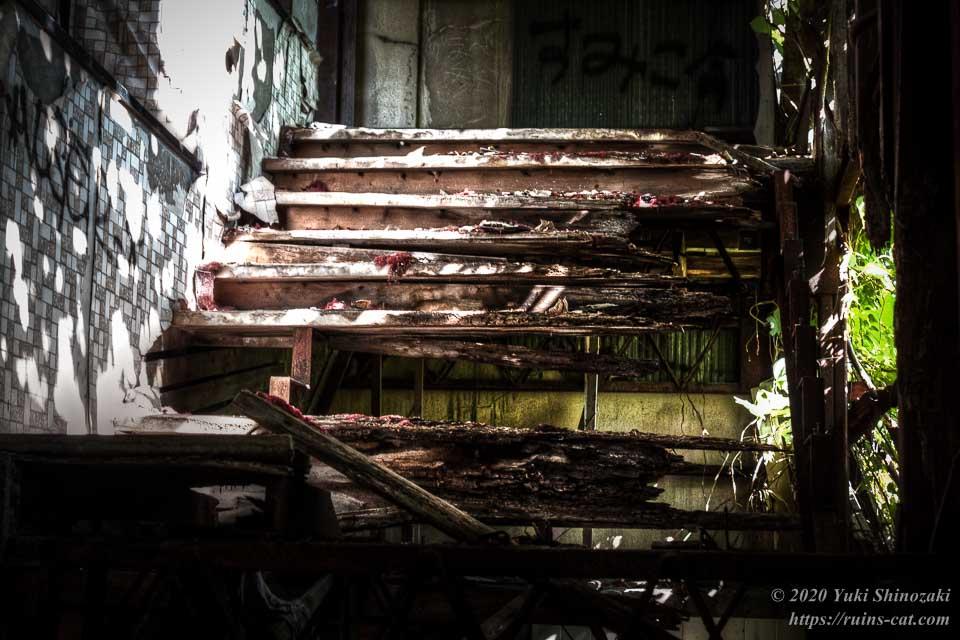 階段の上の方にはかろうじて踏み板が残っているが、それも腐っている