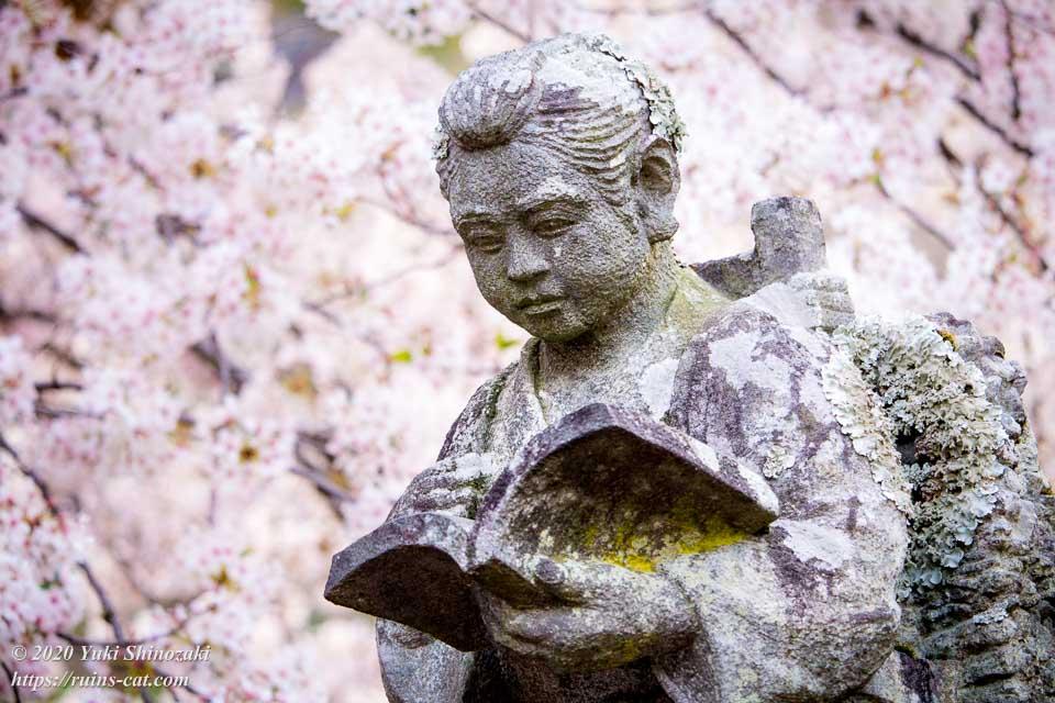 満開の桜の下の二宮金次郎