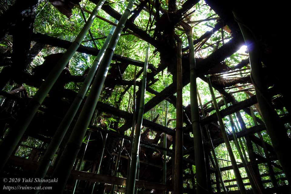 ホテル江戸城の左回りルートの最初の建物の内部。フロントだと思われるが、火災の跡があるほか成長した竹が建物のすべてを突き破り、原型をほぼとどめていない。
