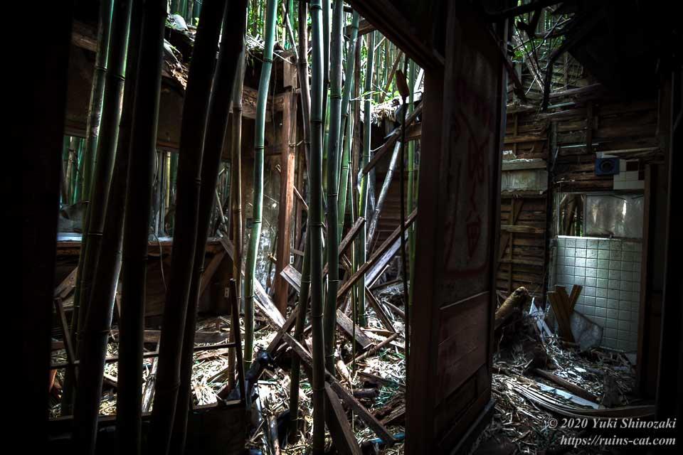 ホテル江戸城のコテージのひとつ。内部は竹でほぼ壊滅状態となっている。