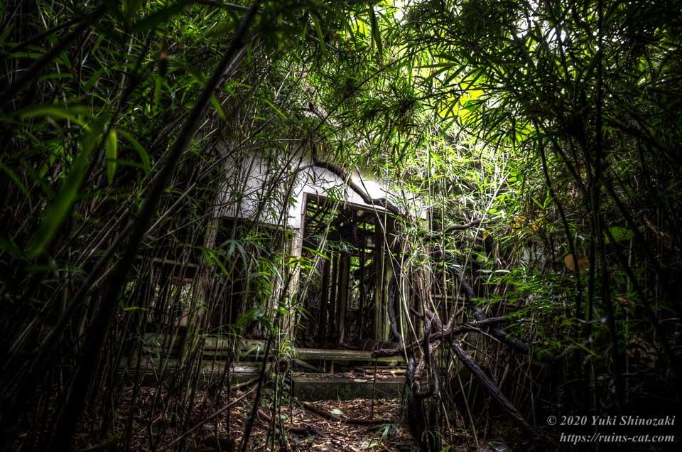 小川脳病院(聖仁会小川病院 心霊スポット) 深い竹やぶに囲まれた病院の入口