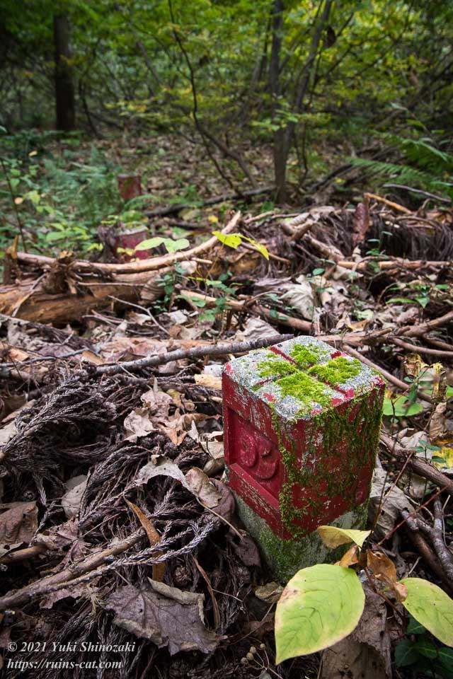 森の中に点々と続いていく国土地理院の赤い三角点