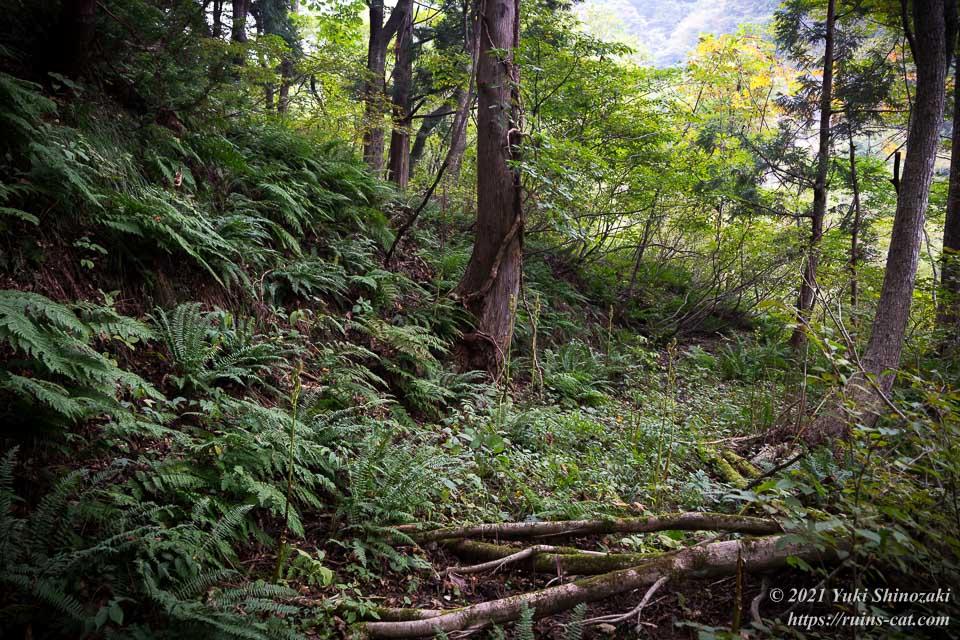 旧和賀川水力発電所の山越えルート、橋までの道のりの一例
