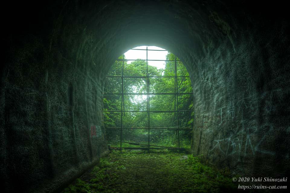 矢板トンネル(弥五郎坂トンネル・心霊スポット) トンネル内から望む外界の緑
