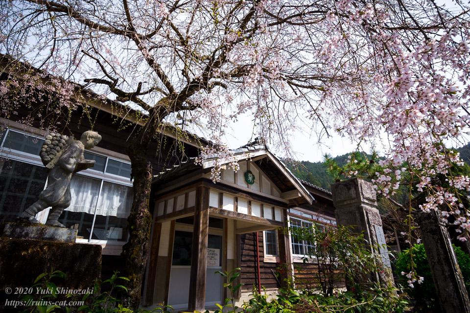 枝垂桜の美しい旧粟代小学校 近景