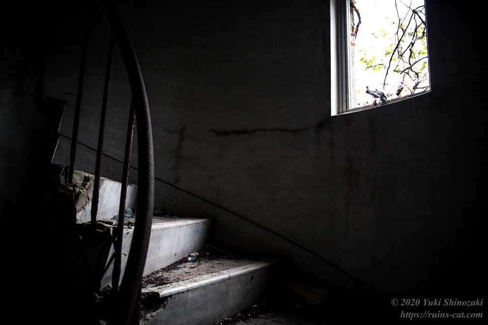 塔内の螺旋階段が小さな窓から差し込む光に照らされている