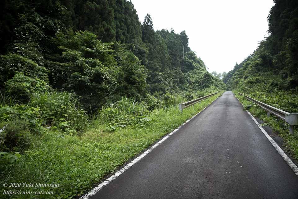 矢板トンネル(弥五郎坂トンネル)へと続く獣道の入口