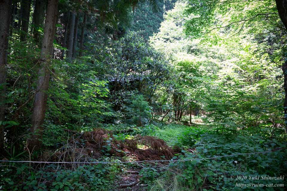 新井さんの家(心霊スポット) 敷地境界線付近