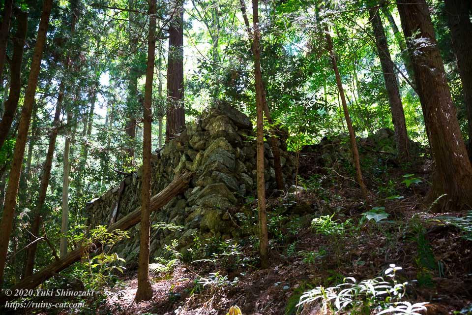 新井さんの家(心霊スポット) 坂道の途中に見えてきた大きな石垣