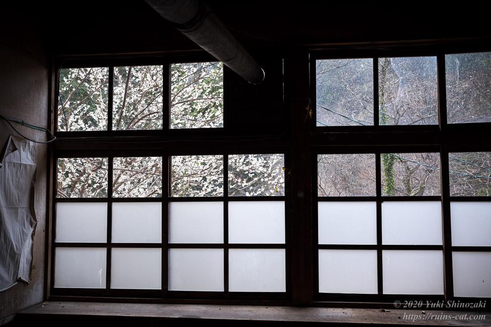 教室の中から裏庭の白い桜が見える。辺りには雪が降り始めている。
