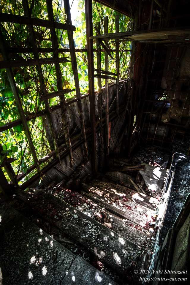 2階から見たブルースカイの階段