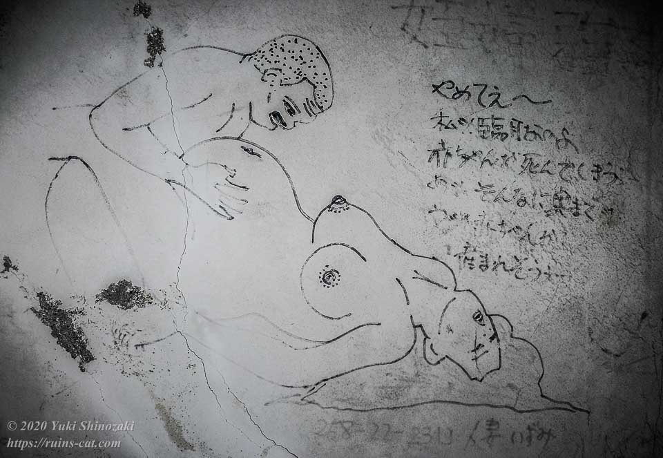 ホテルセリーヌの妊婦「人妻いずみ(0258-22-2319)」と坊主男のSEX。