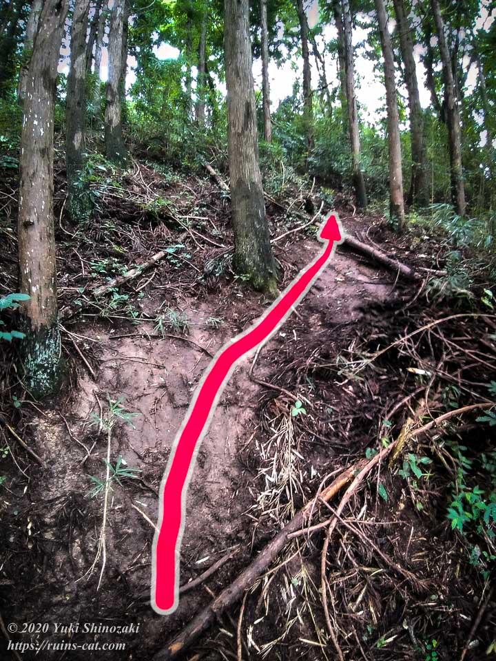 小川脳病院(聖仁会小川病院)への行き方を示した写真 地点3「進入路の急坂」