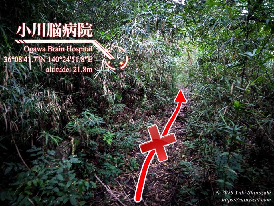 小川脳病院(聖仁会小川病院)への行き方を示した写真 地点4「間違った道」