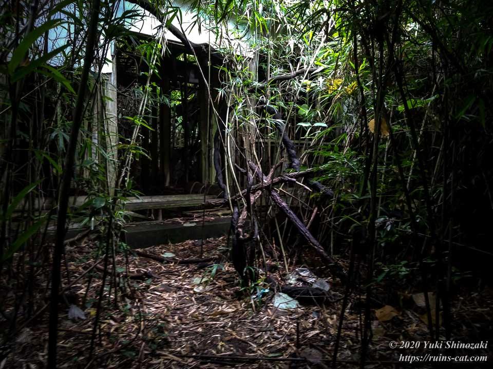 小川脳病院(聖仁会小川病院)への行き方を示した写真 地点9「迷いの竹林の中の廃病院」