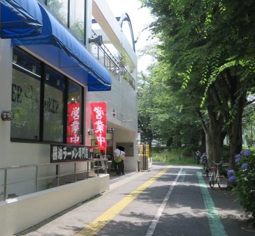 shoyu-aoki1.jpg
