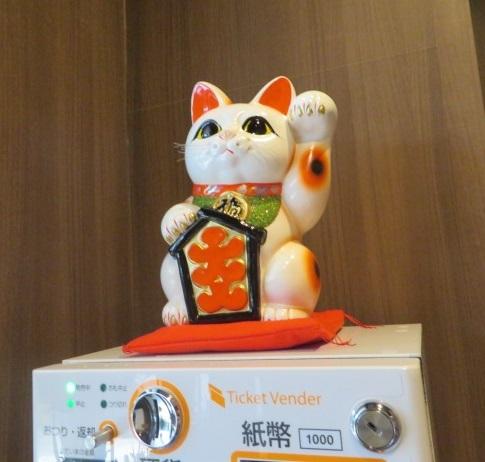 shoyu-aoki12.jpg